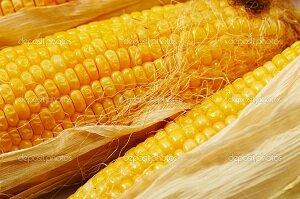 kukuruza-v-skorovarke
